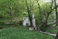 France, Burgundy  Abbaye Notre Dame de Quincy. the forest surronding the ruins