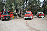 Three red fire trucks