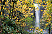 South Falls in autumn, Silver Falls State Park, Oregon.
