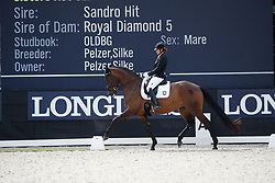 Schneider Dorothee, GER, Sisters Act Old Vom Rosencarree<br /> Longines FEI/WBFSH World Breeding Dressage Championships for Young Horses - Ermelo 2017<br /> © Hippo Foto - Dirk Caremans<br /> 04/08/2017