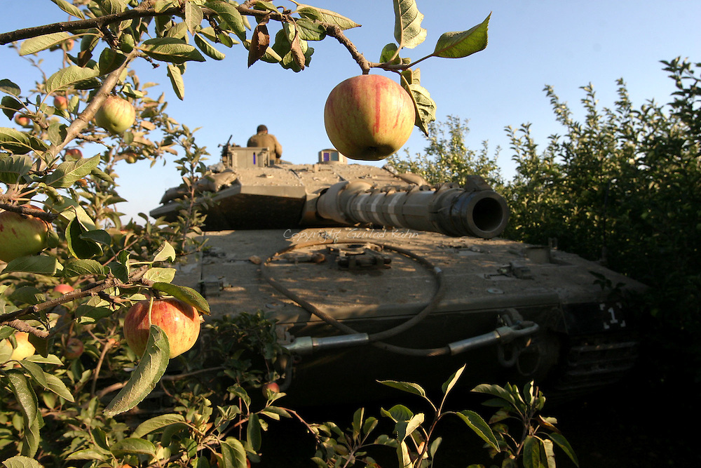 Tanks on the northern Israeli border get ready to enter Lebanon on a mission into the village of Taybeh in southern Lebanon on Tuesday August 1st 2006..
