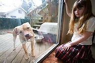 Rya Hickey, daughter of Margaret B. Jones, in the kitchen with one of their pet pit bulls looking through the patio doors.  This red nosed pit bull is named Piru.