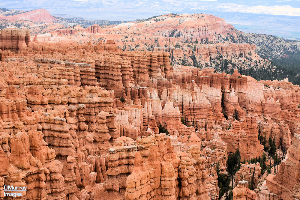Hoodoos, Bryce Canyon National Park, Utah, USA