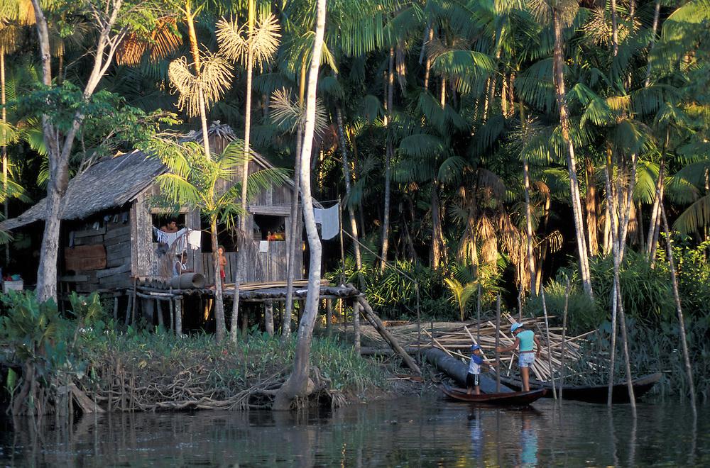 Along Amazon River,Ilha do Marajo,Amazon Delta,Amazonia,Brazil