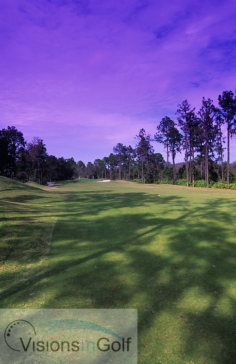 Rosedale GC, Florida, USA<br /> 11th hole<br /> Photo Credit: Charles Briscoe-Knight / visionsIngolf.com