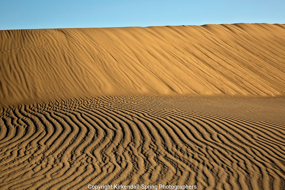 ID00674-00...IDAHO - Patterns in the sand at Bruneau Dunes State Park near Mountain Home.