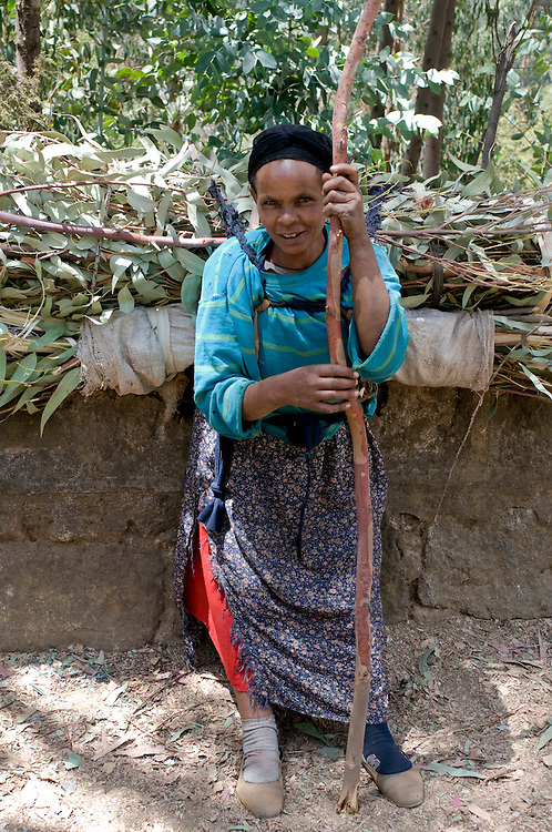 Woman carry wood on their backs, Addis Abeba, Ethiopia,Africa
