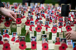 © Licensed to London News Pictures. 04/11/2015. London, UK. Crosses showing the faces of fallen servicemen being hammered in to place before a service to mark the opening of the Filed of Remembrance at Westminster Abbey, attended by Prince Philip, Duke of Edinburgh and Prince Harry.  The Field of remembrance is a memorial garden to commemorate British and Commonwealth military and civilian servicemen and women in the two World Wars and later conflicts. Photo credit: Ben Cawthra/LNP