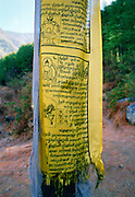 Buddhist prayer flag on mountain path to Tak Tsang Monastery, Bhutan