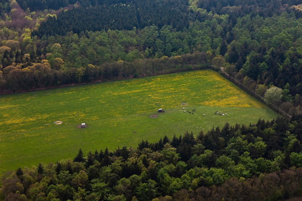 Nederland, Friesland, Gemeente Gaasterlan-Sleat, 28-04-2010; Gaasterland, de bosrijke Zuidwesthoek. Het bos is (gedeeltelijk) ontgonnen om plaats te maken voor een weiland. Koeien rond een watertank..Gaasterland, the forested southwest. The forest is (partially) reclaimed to make room for a meadow. Cows around a water tank..luchtfoto (toeslag), aerial photo (additional fee required).foto/photo Siebe Swart