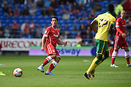 Peter Whittingham of Cardiff city in action. Skybet football league championship match, Cardiff city v Norwich city at the Cardiff city Stadium in Cardiff, South Wales on Saturday 13th Sept 2014<br /> pic by Andrew Orchard, Andrew Orchard sports photography.