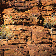 Detail of red rock wall at Kings Canyon