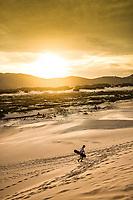 Dunas da Praia da Joaquina. Florianópolis, Santa Catarina, Brasil. / Dunes of Joaquina Beach. Florianopolis, Santa Catarina, Brazil.