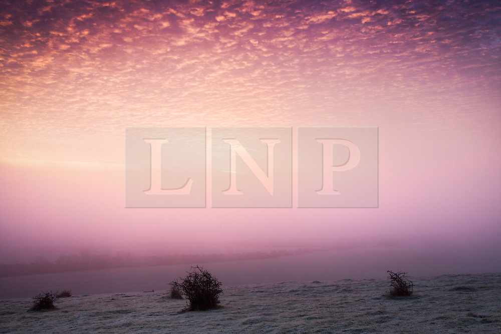 © Licensed to London News Pictures. 05/01/2014. Beacon Hill, Burghclere, Hampshire, UK. A frosty and foggy sunrise over countryside from Beacon Hill, the site of an Iron Age Hill Fort next to the A34 near Burghclere in Hampshire. Photo credit : Rob Arnold/LNP