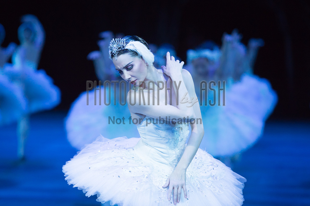Tamara Rojo performing in English National Ballet's Swan Lake in the round, technical rehearsal at The Royal Albert Hall, London on June 11 2013. Photo: Arnaud Stephenson