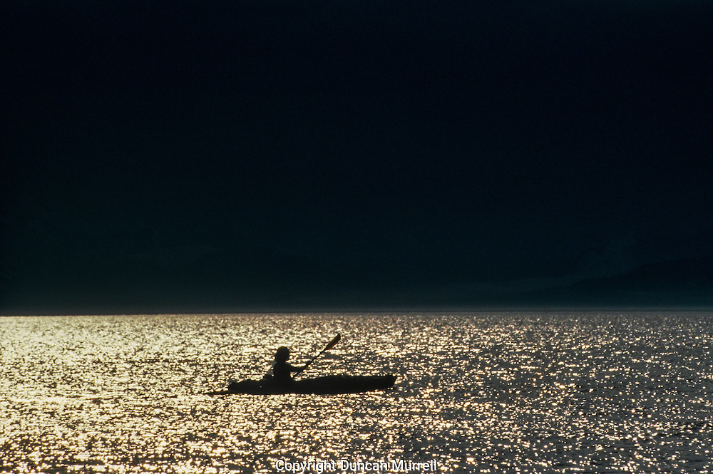 This is one of my favourite photos because it captures the serenity and hypnotic bliss that I felt when I was kayaking in Southeast Alaska. It wasn't easy at times, and sometimes the distances seemed interminable, especially when I was tired and hungry, but at the end of another rewarding day with the whales I felt like I was imbued with their power and resilience, and could glide across the surface effortlessly for eternity.