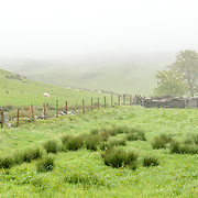 A fence separates the grazing pastures of a farm in Snowdonia, Wales.