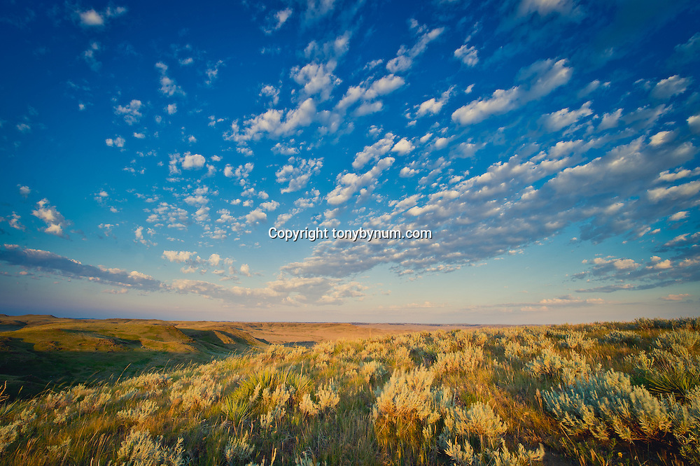 sun rising on the prairie of eastern montana valley county