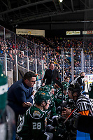 KELOWNA, CANADA - JANUARY 9:  Everett Silvertips' head coach Dennis Williams stands on the bench and speaks to referee Troy Paterson against the Kelowna Rockets on January 9, 2019 at Prospera Place in Kelowna, British Columbia, Canada.  (Photo by Marissa Baecker/Shoot the Breeze)