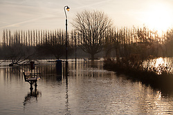 © Licensed to London News Pictures. 12/01/2014. Reading, Berkshire, UK. Sunrise at Christchurch Meadows  along the Thames Path in Reading, Berkshire. The River Thames has broken its banks causing extensive flooding. Photo credit : Rob Arnold/LNP