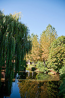 Chartres, France. A park just outside Chartres - Trees reflected in a willow pond.
