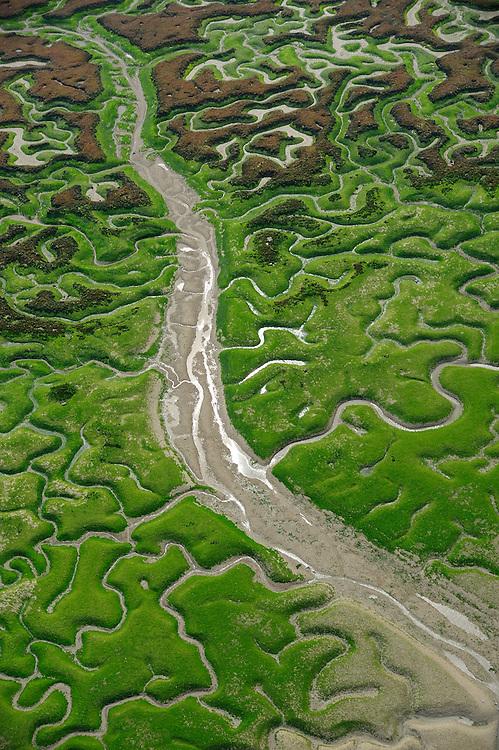 Marshes in Bahía de Cádiz Natural Park, Cádiz, Andalusia, Spain.