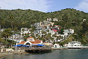 Catalina Island Real Estate