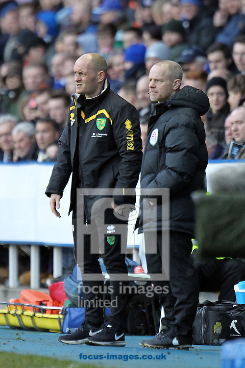 Norwich Manager Alex Neil during the Sky Bet Championship match at the Madejski Stadium, Reading<br /> Picture by Paul Chesterton/Focus Images Ltd +44 7904 640267<br /> 26/12/2016