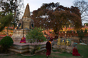 Mahabodhi Temple, home of the Banyan Tree under which the Lord Budha received enlightenment, Bodh Gaya.