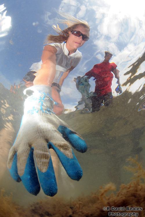 Malama Maunalua Algae Cleanup