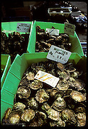 09: OYSTERS SELLING