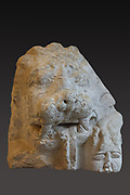 Carved stone head of a lion with its paw on a human head, tomb guardian, from an Iberian-Roman funerary monument, from Cortijo de Don Aldonza, in the Archaeological Museum of Ubeda, Ubeda, Jaen, Andalusia, Spain. Picture by Manuel Cohen