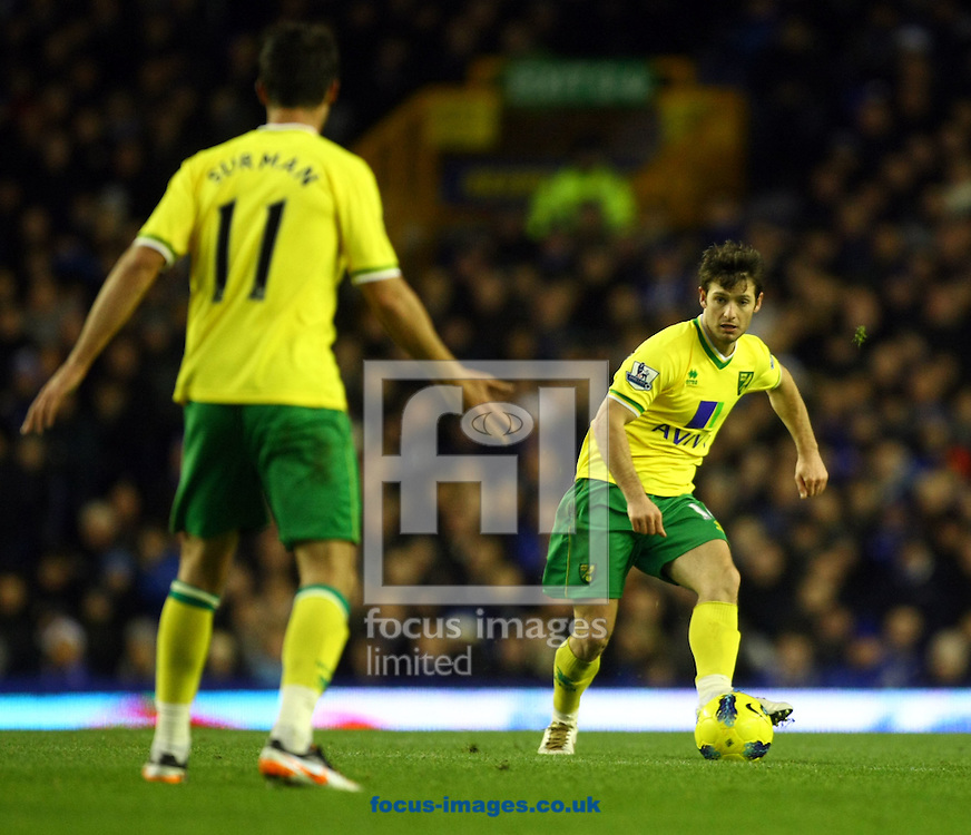 Picture by Paul Chesterton/Focus Images Ltd.  07904 640267.17/12/11.Wes Hoolahan and Andrew Surman of Norwich in action during the Barclays Premier League match at Goodison Park Stadium, Liverpool.