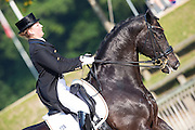 Florine Kienbaum - Don Windsor OLD<br /> FEI European Dressage Championships for Young Riders and Juniors 2013<br /> © DigiShots