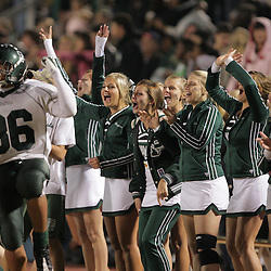 07 November 2008: Cheerleaders Celebrate as the Ponchatoula Green Wave defeated District 7-5A rival the Hammond Tornados 34-13 at Strawberry Stadium in Hammond, LA . The Green Wave with the win clinched a spot in the 2008 playoffs.