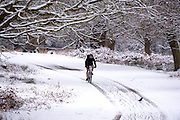 © Licensed to London News Pictures. 03/02/2015. Richmond, UK. A man rides a cycle through the snow.  Deer in snow in Richmond Park, South West London today 3rd February 2015. Snow fell across the London area overnight . Photo credit : Stephen Simpson/LNP