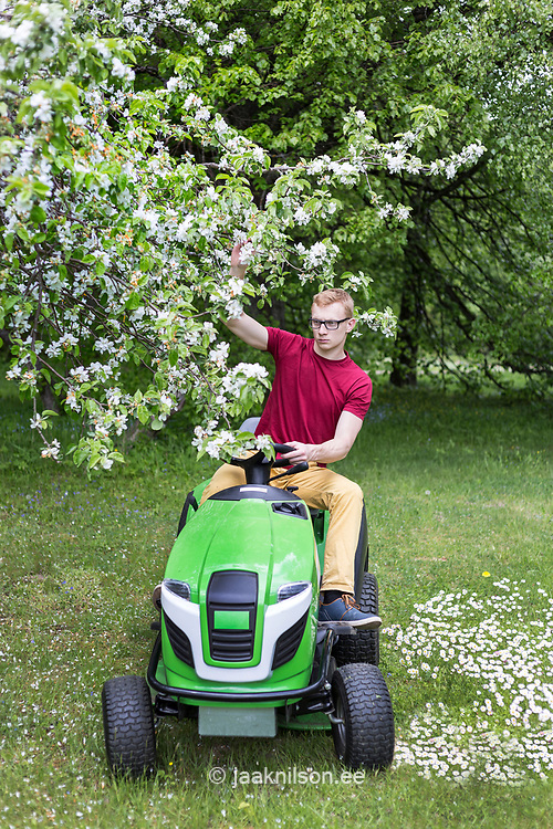Man driving ride on mower, mowing grass in yard, tractor.