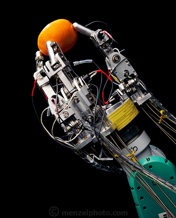 At the Tsukuba Mechanical engineering Lab (M.E.L.), Japan, a robotic hand with tactile sensors gently grips an orange. The robotic hand is equipped with tactile sensors in the finger tips to transmit a signal back to the operator. Designed by Hitoshi Maekawa Ph.D. a researcher in the cybernetics division of the Department of Robotics of Tuskuba MEL. Over the last 8 years, Maekawa has developed a robotic hand with tactile sensors that can hold items in its fingertips and compensate for slippage. His research is into dynamic grasping force control for a multi-fingered hand. (Paper on project was presented at the IEEE International Conference On Robotics and Automation, 1996. Work is ongoing).