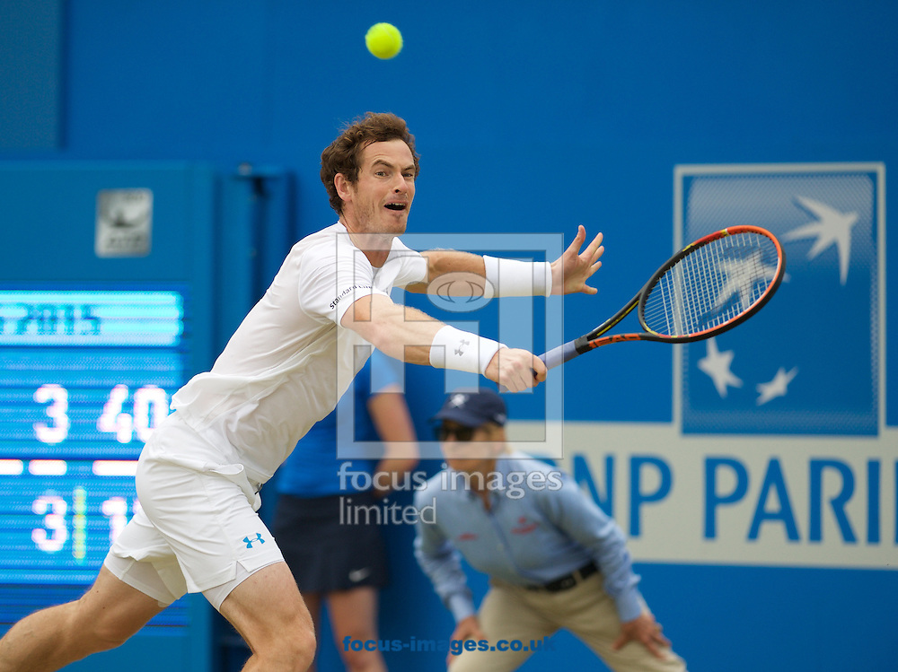 Andy Murray of Great Britain during his semi-final final match against Viktor Troicki of Serbia in Aegon Championships at the Queen's Club, West Kensington<br /> Picture by Alan Stanford/Focus Images Ltd +44 7915 056117<br /> 20/06/2015