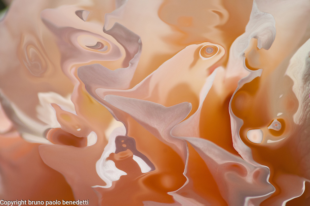 Ethereal atmosphere and soft orange mood given by floating fluid orange shapes.
