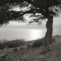 Dead Sea, Qumran and En Gedi