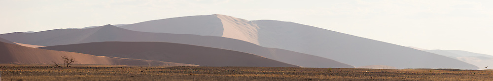 The massive sand dunes of Namib-Naukluft National Park turn pale tan in the waning afternoon sun, Namibia.