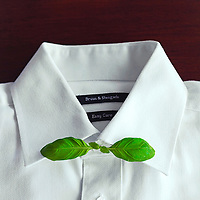 White shirt with butterfly bow tie made of basil leaves