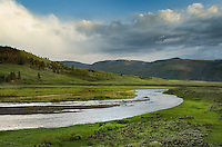Lamar River Valley, Yellowstone National Park Wyoming