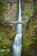 A hiker stands on the Multnomah Falls bridge and admires the grandeur of the waterfall.