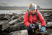 Seaweed chef Prannie Rhatigan, gathering seaweed near her home on Streedagh Beach,  in Grange, Co. Sligo. <br /> Photo: James Connolly<br /> 26JAN18