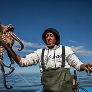 Ce jour là, Rachid et Larbi pêcheront 30 kg de poulpe qui leur rapporteront une cinquantaine d'euros