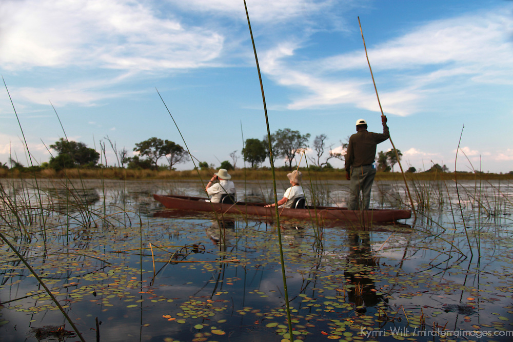 Africa, Botswana, Okavango Delta. Safari by mokuru through Moremi waterways.