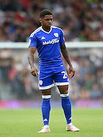 Kadeem Harris, Cardiff City.