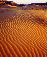 I wanted to show the detail and vibrant color of the Coral Pink Sand Dunes so I photographed this image at sunset.